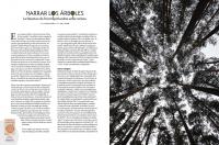 http://www.lacarreteradelacosta.com/files/gimgs/th-38_32_adn---articulo-arboles-1.jpg