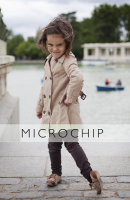 http://www.lacarreteradelacosta.com/files/gimgs/th-44_27_microchipred.jpg